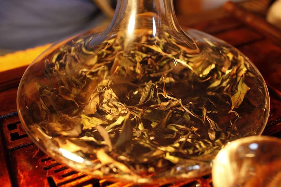Метод контролируемой экстрации чая