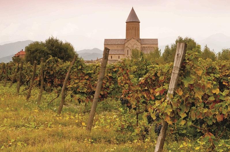 Лучшее место для любителей вина и приключений