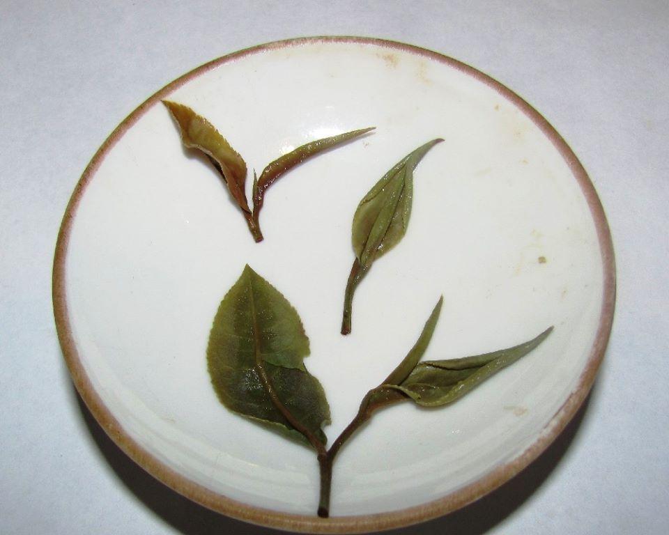Иван Соколов - обзор грузинского белого чая